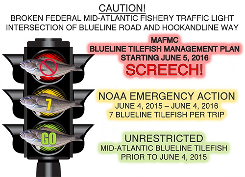 CAUTION!  Broken Blueline Tilefish traffic light